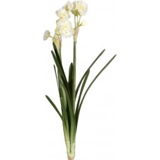 Декор Daffodil