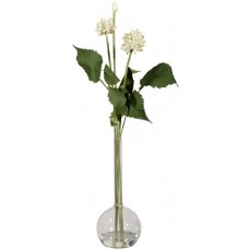 Декор Allium